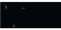 DKS Låse & Alarm logo